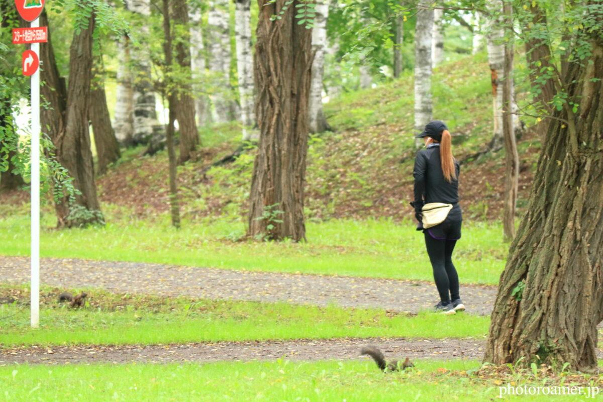 緑ヶ丘公園 ジョギング1 エゾリス