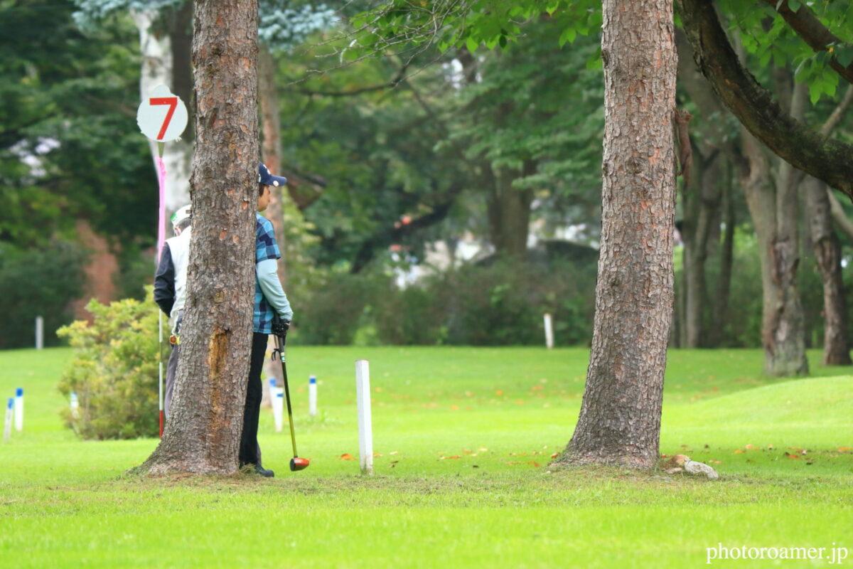 緑ヶ丘公園 パークゴルフ エゾリス3