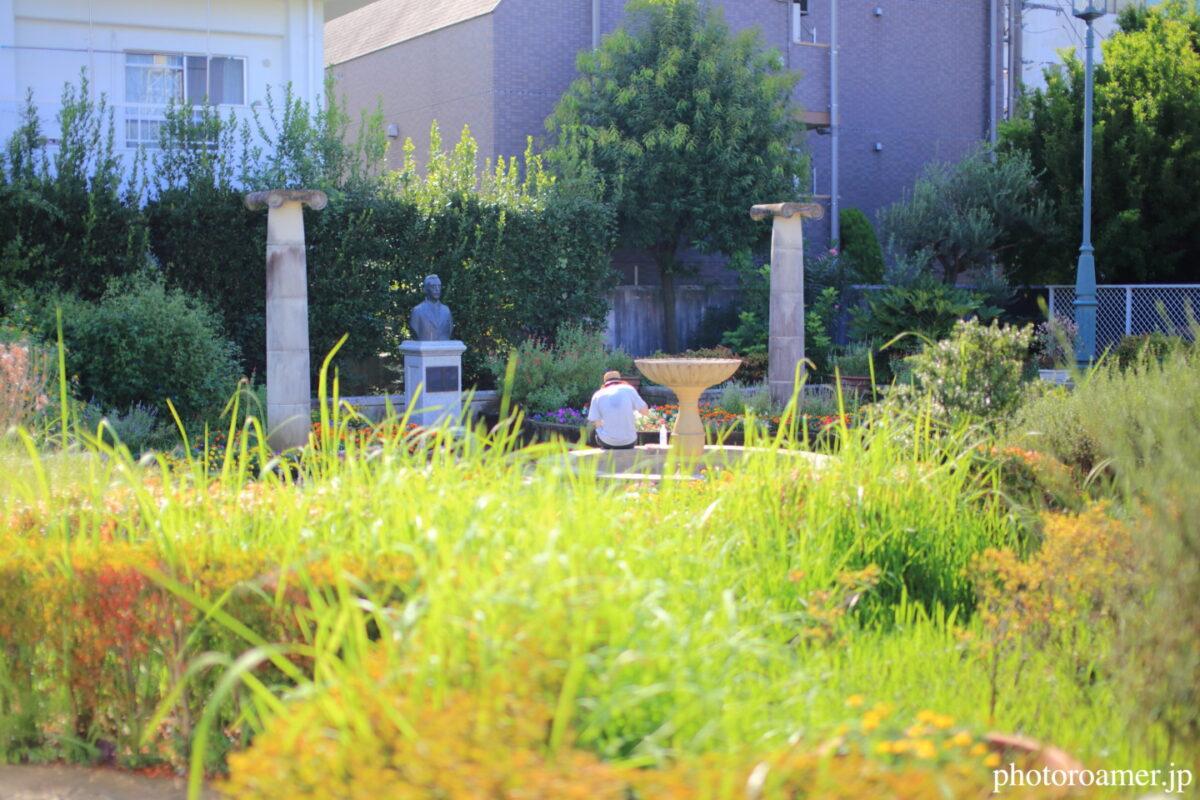 東京 小泉八雲記念公園 利用者2