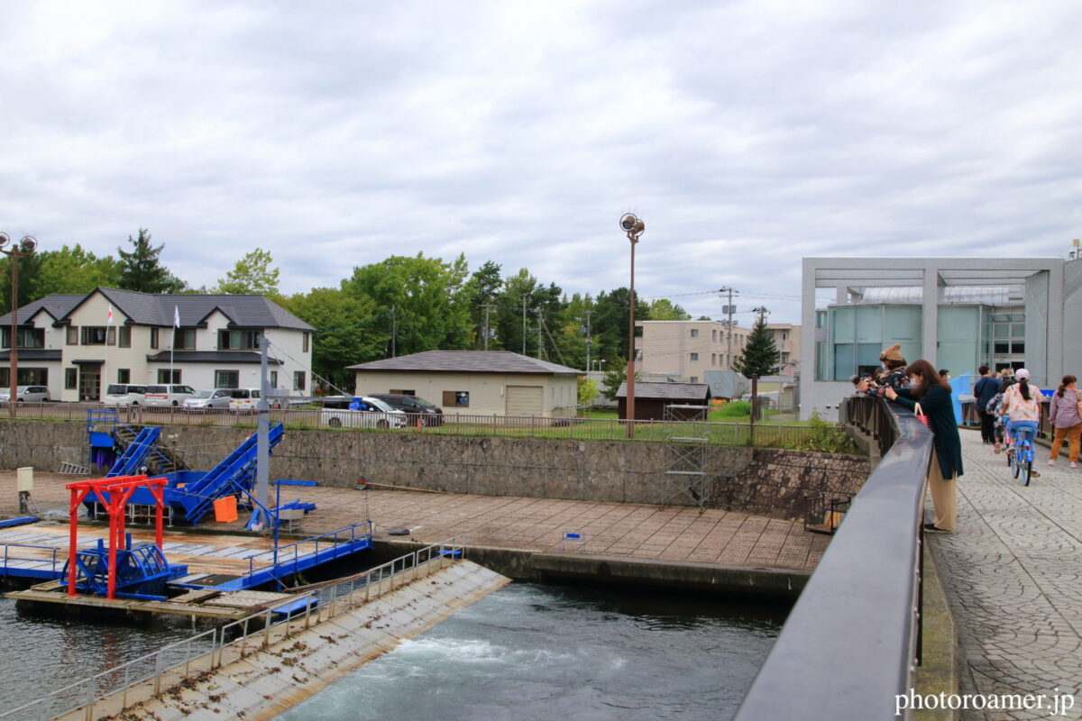 北海道旅行 道の駅 サーモンパーク千歳 千歳川 橋上