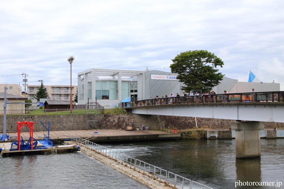北海道旅行 道の駅 サーモンパーク千歳 臨時駐車場 千歳川