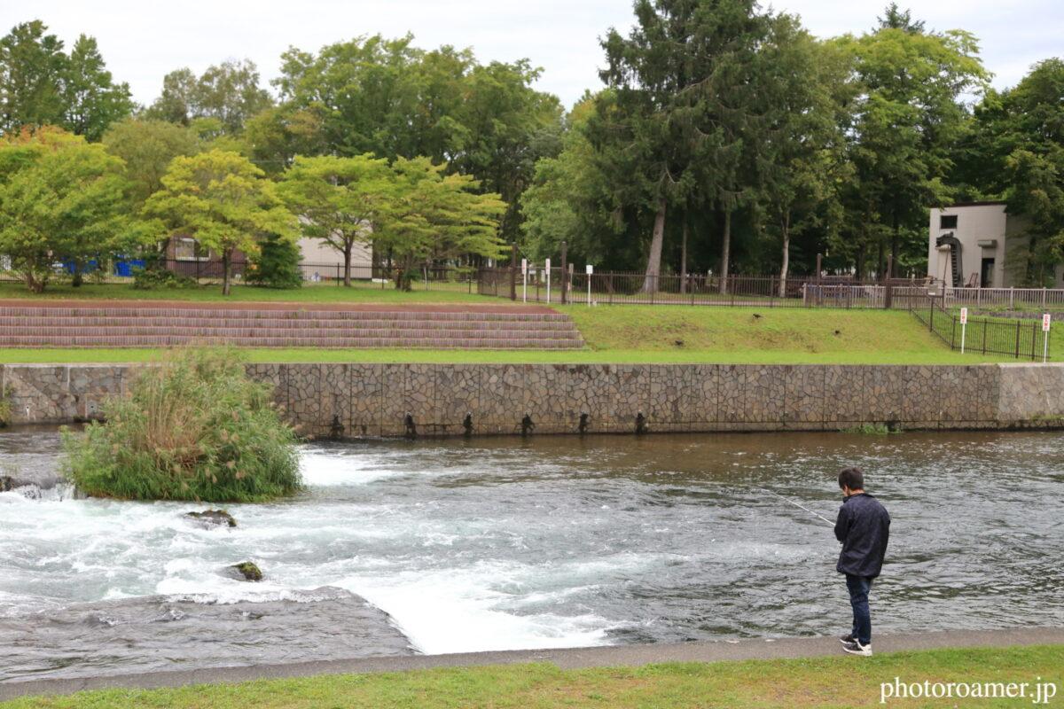 北海道旅行 道の駅 サーモンパーク千歳 千歳川 釣り