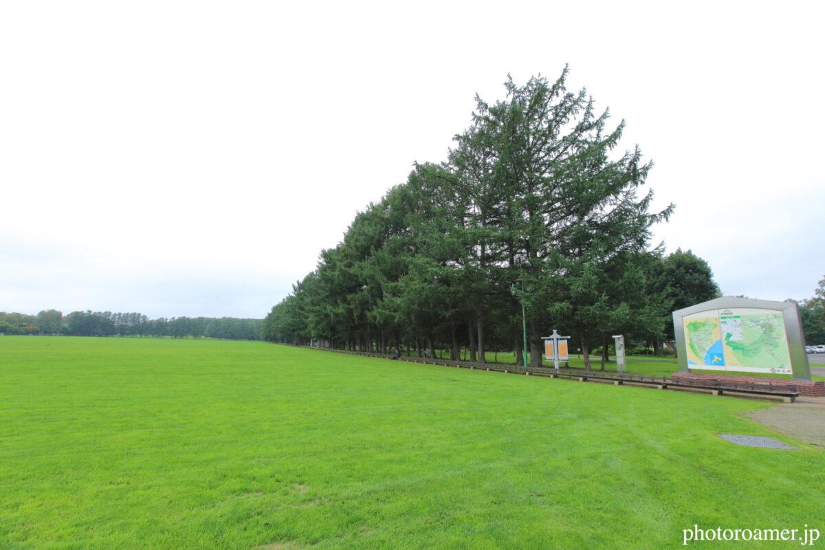 緑ヶ丘公園 グリーンパーク 世界一長いベンチ 全景