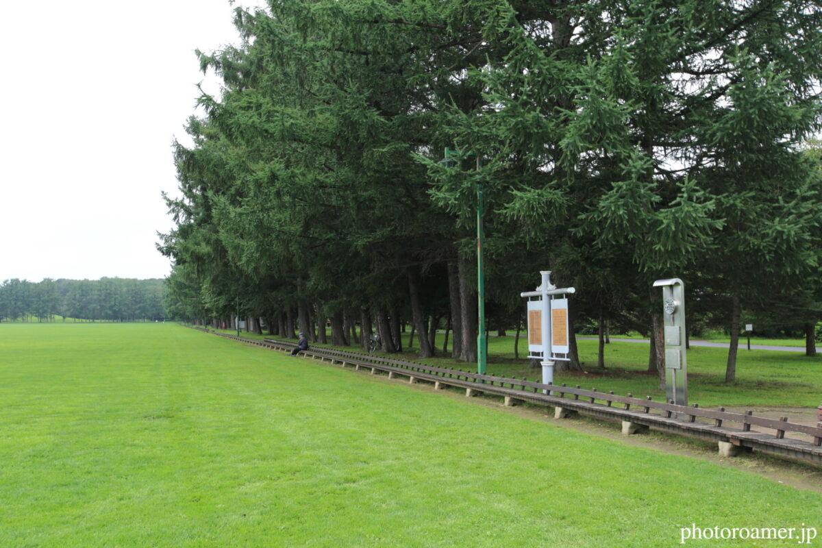 緑ヶ丘公園 グリーンパーク 世界一長いベンチ