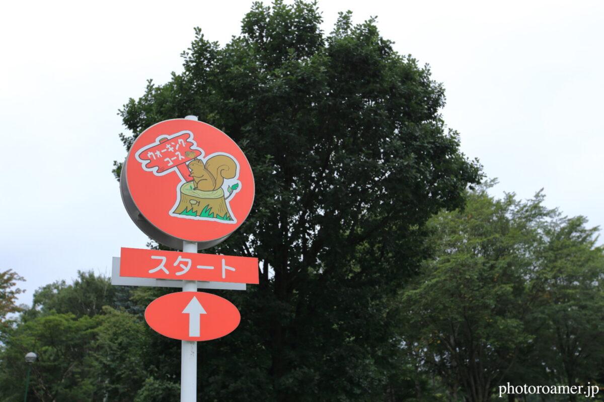 緑ヶ丘公園 ウォーキングスタート