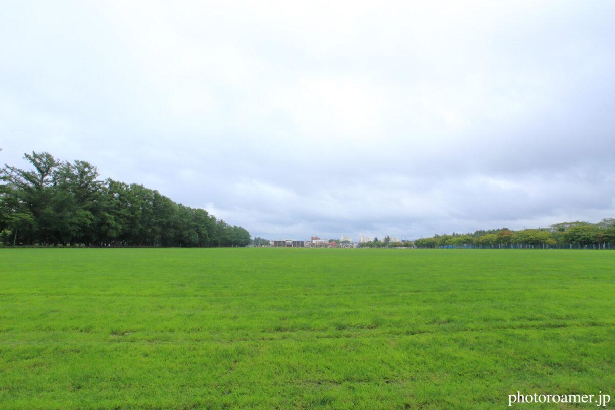 緑ヶ丘公園 グリーンパーク 全景
