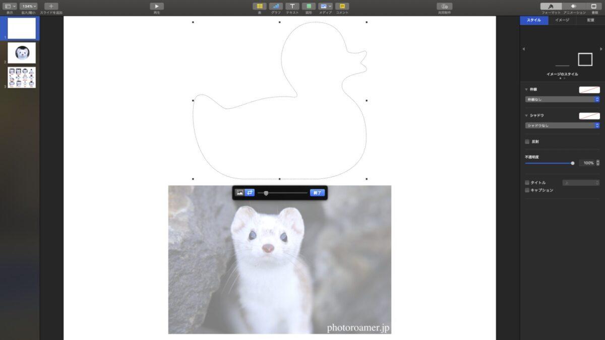 Keynote 写真 トリミング範囲 写真サイズ